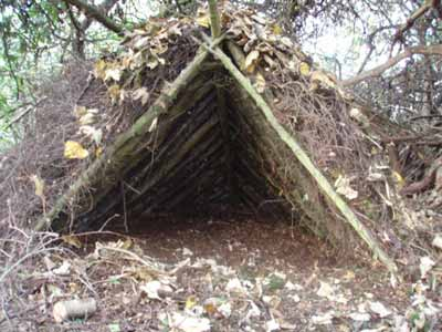 The Importance Of Shelter To Survival STUDY SURVIVAL PREPAREDNESS