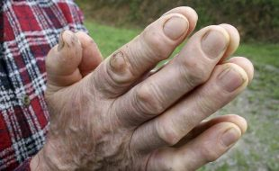 Homesteading Hands